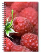 Raspberry Spiral Notebook