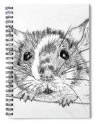 Rat Sketch Spiral Notebook