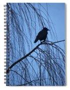 Raven  Spiral Notebook