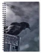 Raven Twilight Spiral Notebook