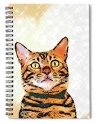 Ravi Series #2 Spiral Notebook