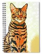 Ravi Series #8 Spiral Notebook