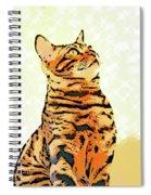 Ravi Series #9 Spiral Notebook