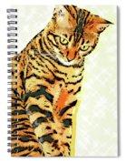 Ravi Series #3 Spiral Notebook