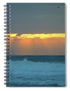 Rays I I Spiral Notebook