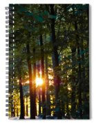 Rays Of Dawn Spiral Notebook