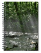 Rays Through The Trees Spiral Notebook