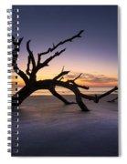 Reach Spiral Notebook