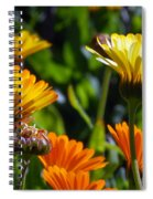 Reach For The Sun 1 Spiral Notebook