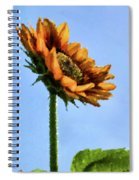 Reach For The Sun Spiral Notebook