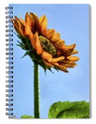 Reach For The Sun Spiral Notebook
