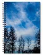 Reaching For Blue Spiral Notebook