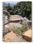Reaching For Summits Spiral Notebook