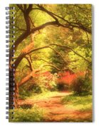 Reaching For The Light Spiral Notebook
