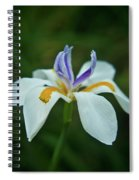 Reaching Iris Spiral Notebook