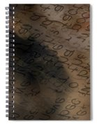 Reading Between The Lines Spiral Notebook