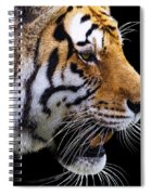 Ready For Lunch Spiral Notebook