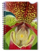 Ready Fpr My Close Up Spiral Notebook