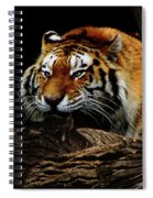 Ready Or Not Spiral Notebook