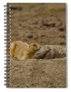 Ready To Dive Spiral Notebook