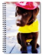 Fire Pup Ready To Roll Spiral Notebook