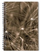 Ready To Seed Spiral Notebook