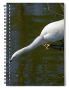 Ready..set.. Spiral Notebook