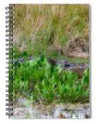 Really Dangerous Alligator Spiral Notebook