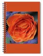 Really Orange Rose Spiral Notebook