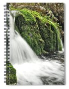 Reany Falls 1 Spiral Notebook