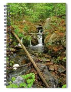 Reany Falls 2 Spiral Notebook