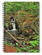 Reany Falls 3 Spiral Notebook