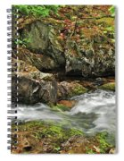Reany Falls 4 Spiral Notebook