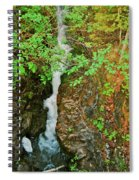 Reany Falls 4548 Spiral Notebook