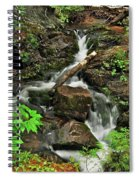 Reany Falls 5 Spiral Notebook