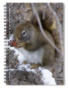 Reaping What We Sow Spiral Notebook