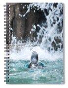 Rear View Penguin Spiral Notebook