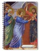 Reassuring Thomas Fragment 1311 Spiral Notebook