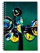 Reckless Abandon Spiral Notebook