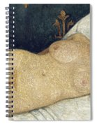 Reclining Female Nude Spiral Notebook