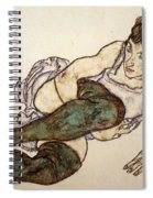 Reclining Woman With Green Stockings Spiral Notebook