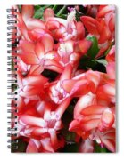 Red Abundance Spiral Notebook