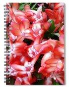 Red Abundance Spiral Notebook