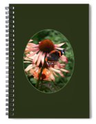 Red Admiral On Coneflower Spiral Notebook