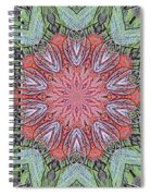 Red Amaryllis Trio Kaleidoscope Spiral Notebook