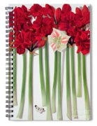 Red Amaryllis With Butterfly Spiral Notebook