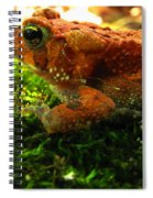 Red American Toad Spiral Notebook