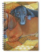 Red And Black Dachshunds - Best Buds Spiral Notebook