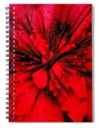 Red And Black Explosion Spiral Notebook