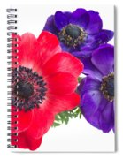Red And Blue Anemone Flowers  Spiral Notebook